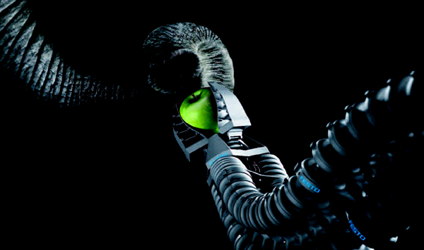 Bionic Arm Inspired by Elephant Trunk