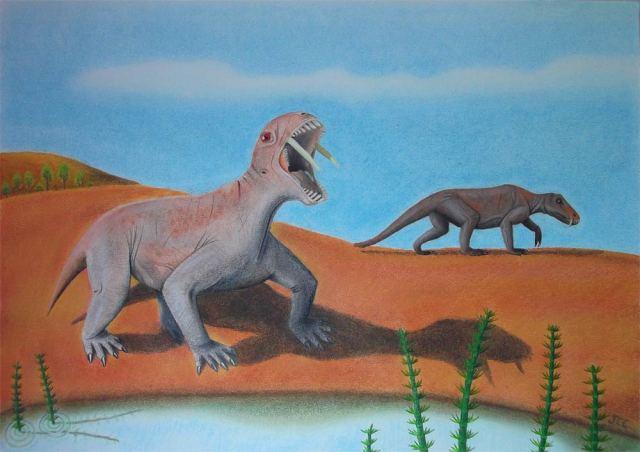 Saber Toothed Vegetarian Dinosaur